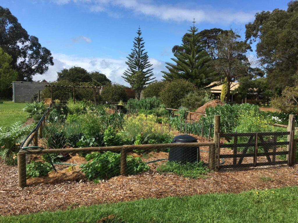 The good life: community garden update 1