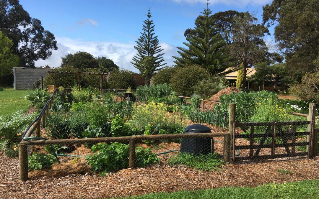 The good life: community garden update