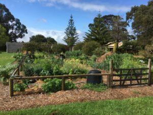 The good life: community garden update 3