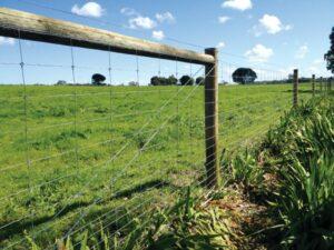 Dividing fences covered by developer 7