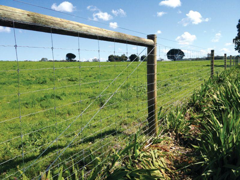 Dividing fences covered by developer 1